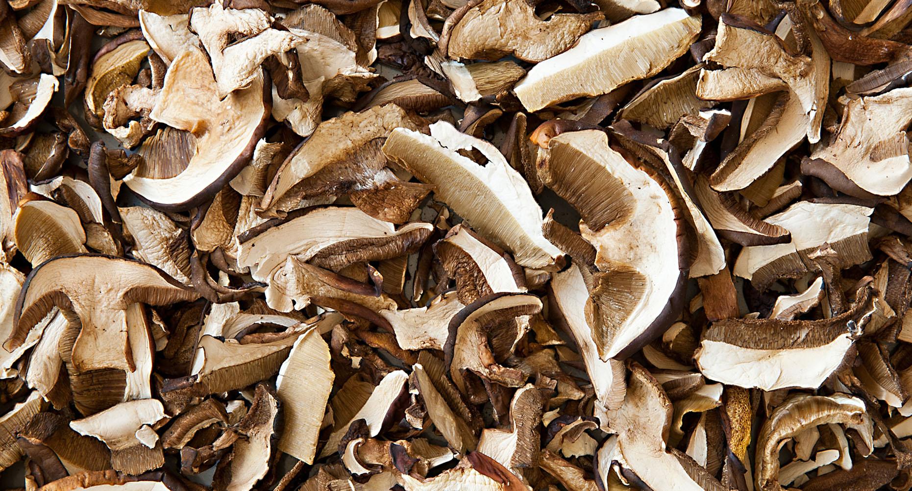 Как сушить грибы