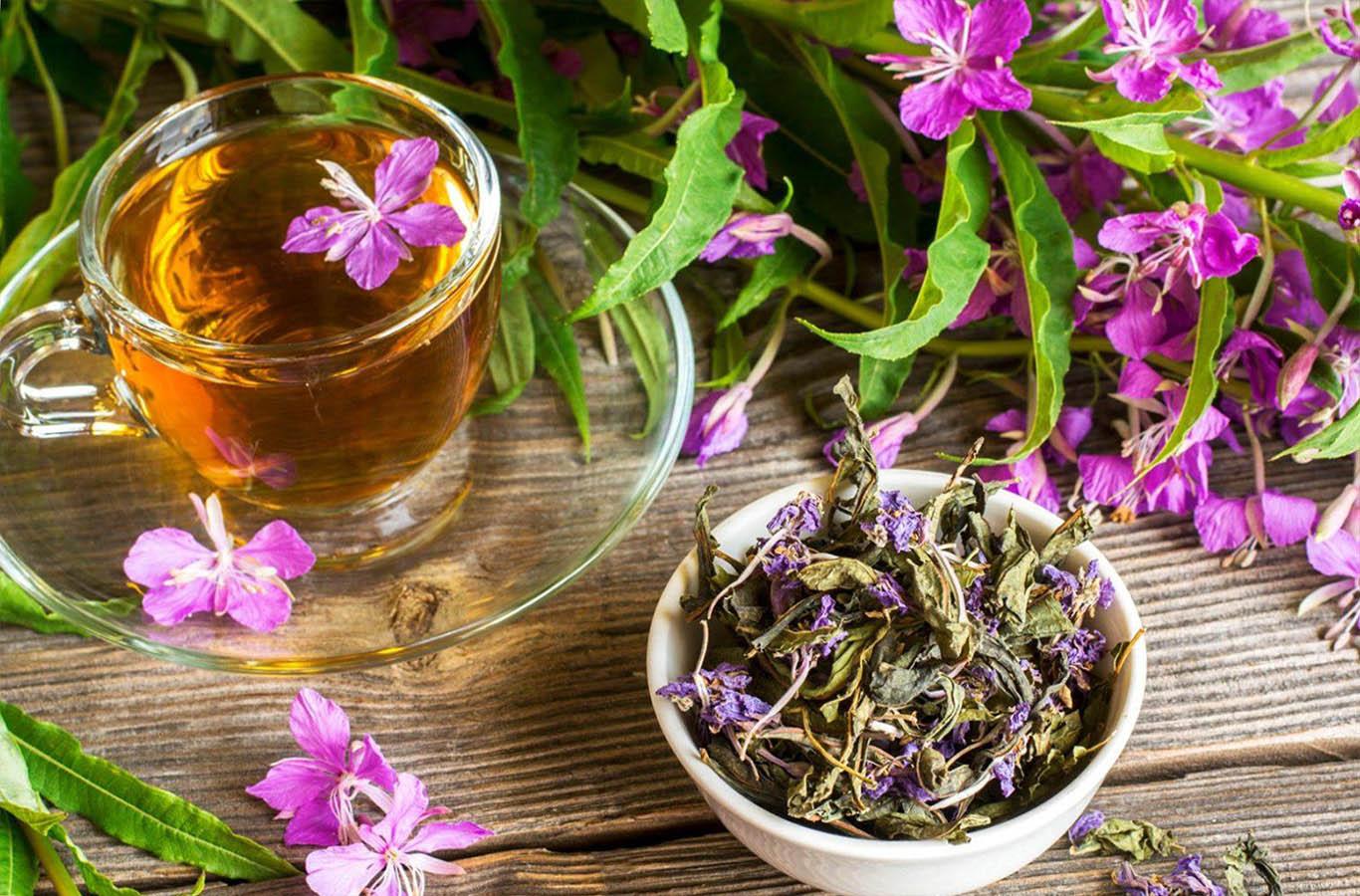 как похудеть с иван-чаем